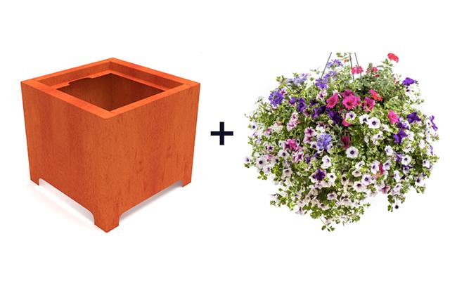 bloembakken dakterras
