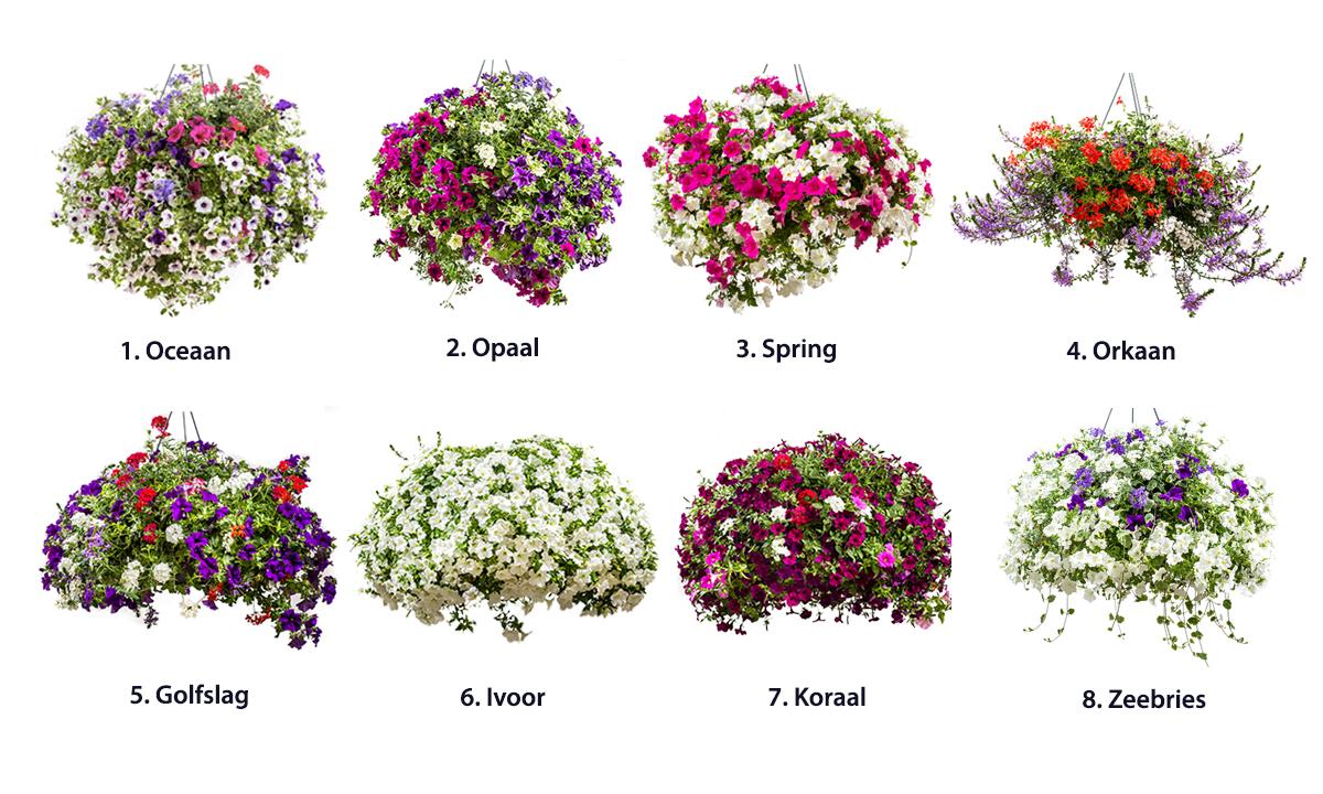 bloembakken balkon