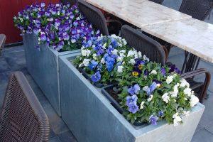 bloembakken buiten